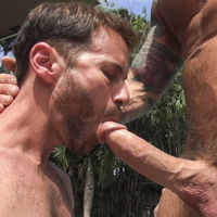 big dick gay blowjob